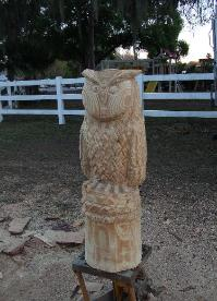 Owl chainsaw carving Florida