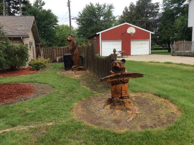 Bear tree carvings Owosso Michigan